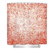 Canvas3740 Shower Curtain