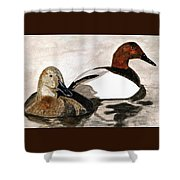 Canvasback Couple Shower Curtain