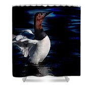 Canvasback Refold Shower Curtain