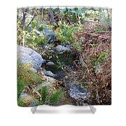 Canyon Creek Shower Curtain