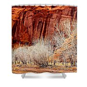 Canyon De Chelly - Spring II Shower Curtain