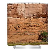 Canyon Dechelly Whitehouse Ruins Shower Curtain