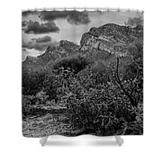 Canyon Del Oro No.48 Shower Curtain