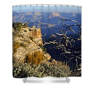 Canyon Foliage Shower Curtain