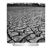Canyon Lake Bed Shower Curtain