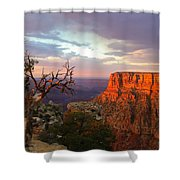 Canyon Rim Tree Shower Curtain