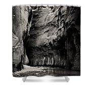 Canyon Trail 3 Shower Curtain