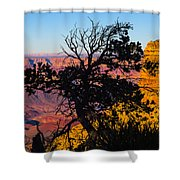 Canyon Tree Shower Curtain