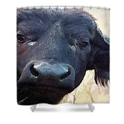 Cape Buffalo Up Close And Personal Shower Curtain