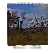 Cape Hatteras Lighthouse 1 8/20 Shower Curtain