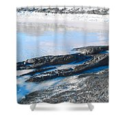 Cape Le Grand Coast Shower Curtain