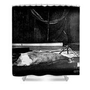 Capeevanshut-antarctica-g.punt-18 Shower Curtain