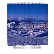 Capeevanshut-antarctica-g.punt-6 Shower Curtain