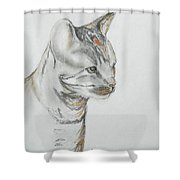Cappi Shower Curtain