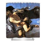 Capture Of Ganymede Shower Curtain