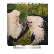 Capuchin Monkeys Charlotte And Samantha Half Proceeds Go To Jungle Friends Primate Sanctuary Shower Curtain