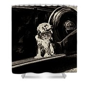 Car And Dog Shower Curtain