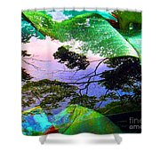 Car Seven Shower Curtain