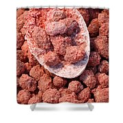 Caramelized Peanuts Shower Curtain