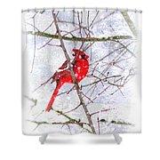 Cardinal Christmas-2014 Shower Curtain