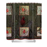 Cardinal Family Shower Curtain