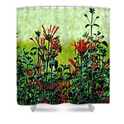 Cardinal Flowers Shower Curtain
