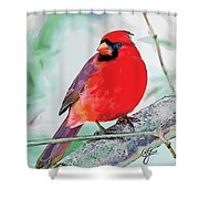 Cardinal In Ice Tree Shower Curtain