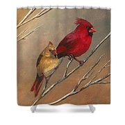 Cardinal Mates Shower Curtain