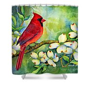 Cardinal On Dogwood Shower Curtain