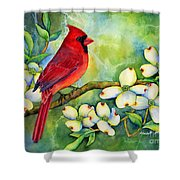 Cardinal On Dogwood Shower Curtain