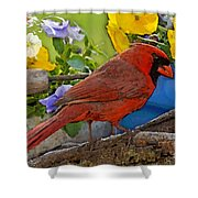 Cardinal With Pansies And Decorations Photoart Shower Curtain