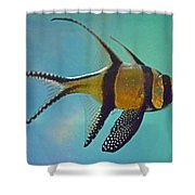 Cardinalfish Shower Curtain