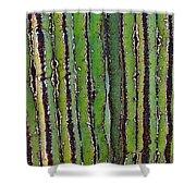 Cardon Cactus Texture. Shower Curtain