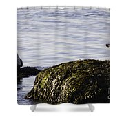 Care To Share? Shower Curtain