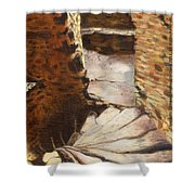 Carew Castle Turret Steps Shower Curtain