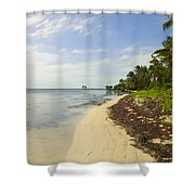 Caribbean Beach In Ambergris Caye Belize Shower Curtain