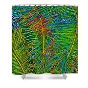 Caribbean Coconuts Shower Curtain