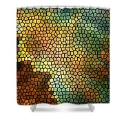 Carina Nebula Mosaic  Shower Curtain