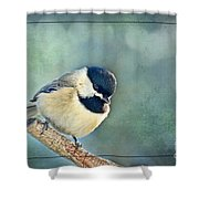 Carlina Chickadee With Soft Blue Bokeh Shower Curtain