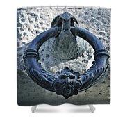 Carlos V Palace Detail Shower Curtain