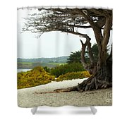 Carmel California Beach Shower Curtain