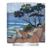 Carmel View From Point Lobos Shower Curtain