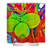 Carmen's Coconuts Shower Curtain