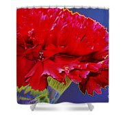 Carnation Carnation Shower Curtain