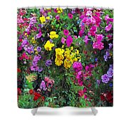 Carnival Flowers Shower Curtain