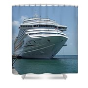 Carnival Freedom Bow Shower Curtain