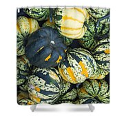 Carnival Winter Squash At The Market Shower Curtain