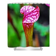 Carnivorous Plant I Shower Curtain