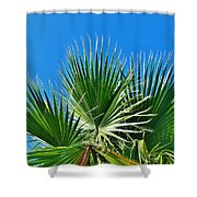Carolina Blue Sky 8/28 Shower Curtain