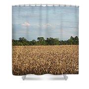 Carolina Field Shower Curtain